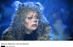 Cats the musical Memory