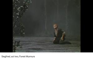 wagner siegfried murmures de la forêt