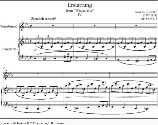 Schubert Winterreise Estarrung