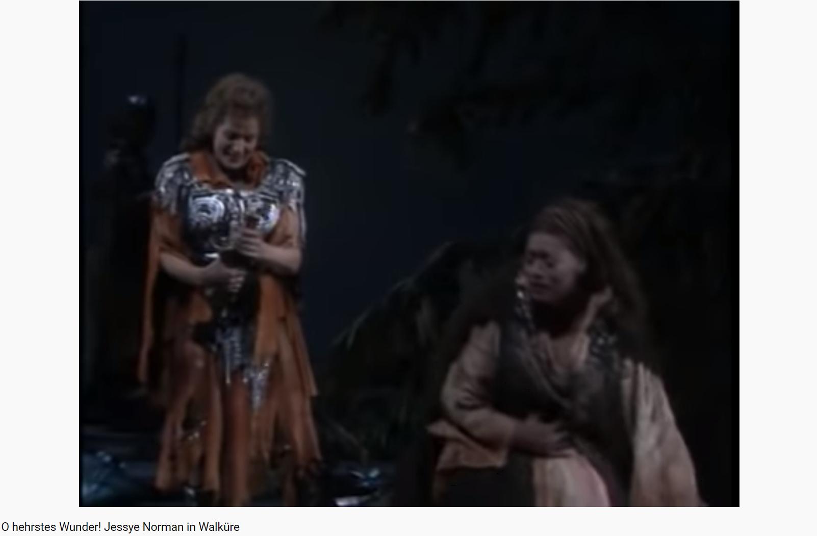 Wagner die Walküre O hehrstes Wunder (MET 1989)