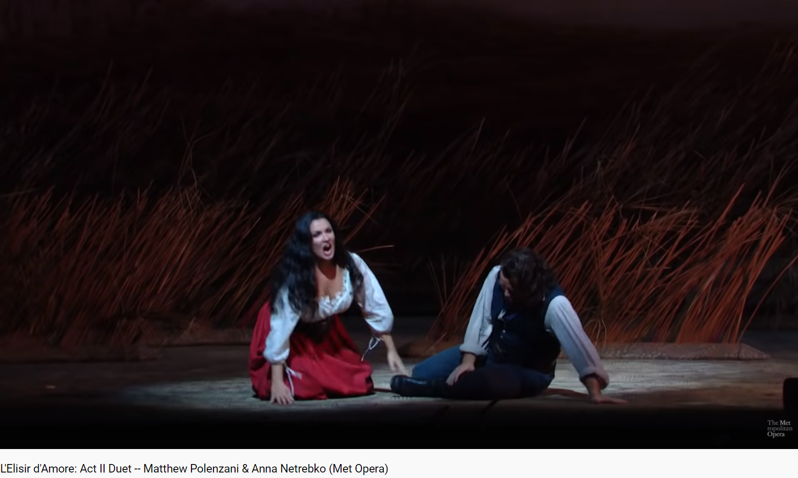 Donizetti l'Elisir d'amore Acte II duo (MET 2012)