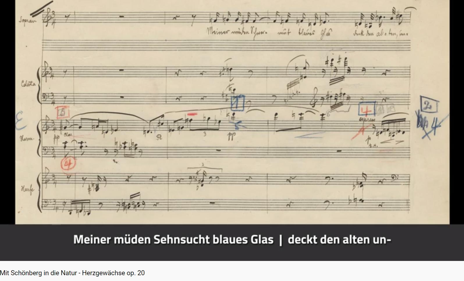 Schönberg Herzgewächse op 20